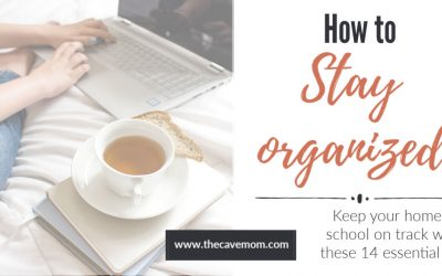 The Best Tips to Stay Organized as a Homeschool Mom